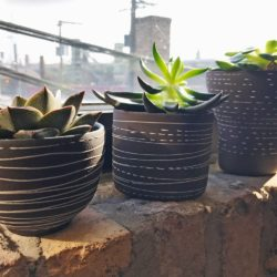 Polly Artisan Stoneware Brown Succulent Planter