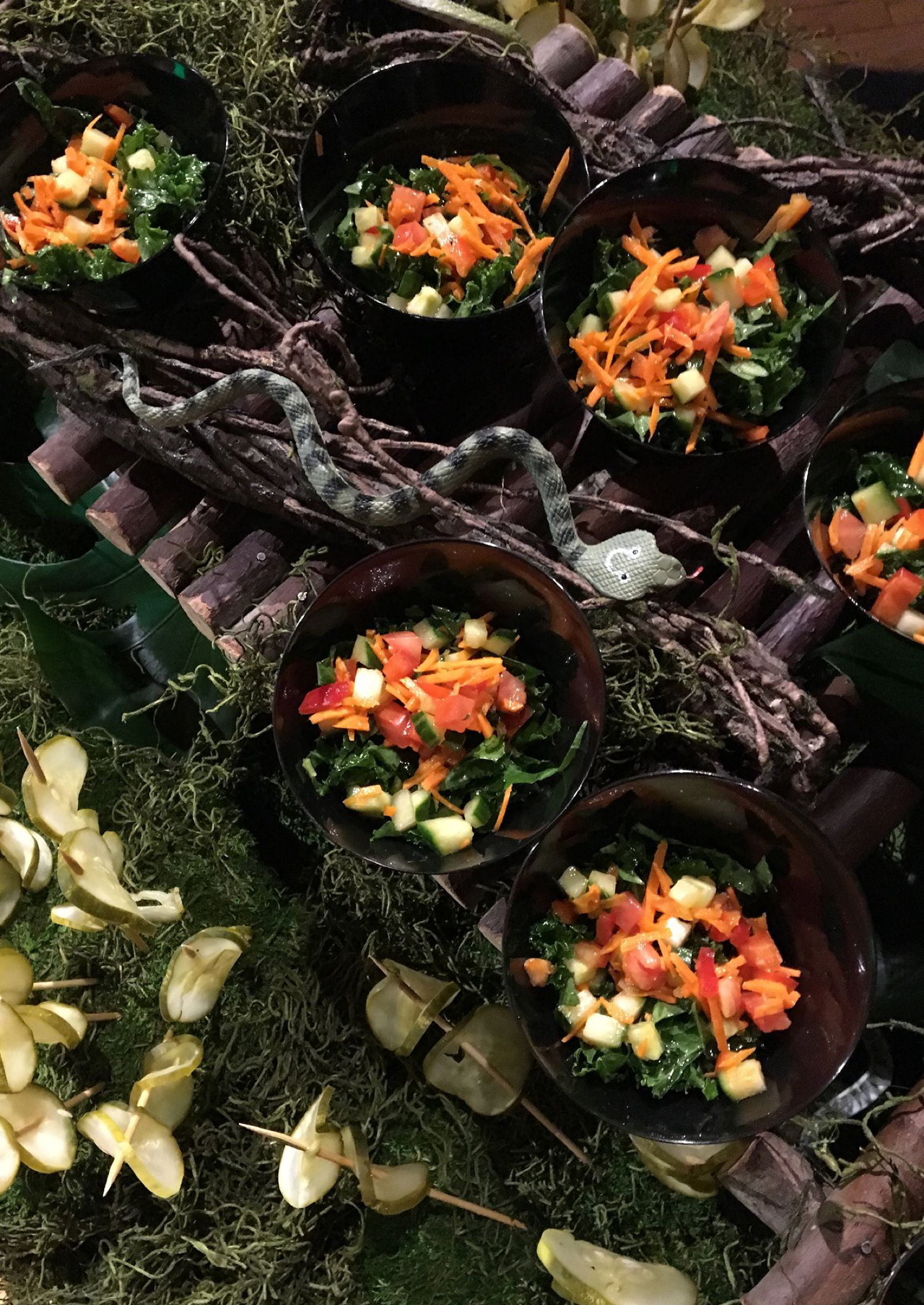 Mitzvah Catering Buffet with Jungle Theme