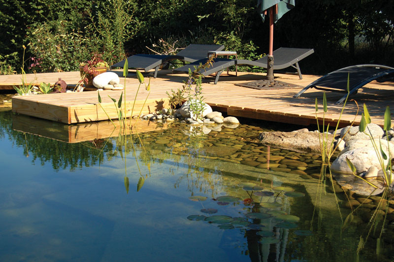 A Clean Swimming Pool without Chemicals is Possible
