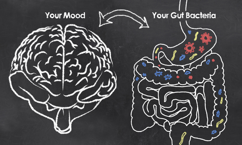 What Does Your Digestion Have To Do With Your Depression