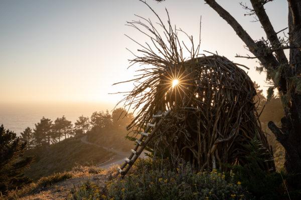 Treebones - Human Nest - Web Size (1 of 1)