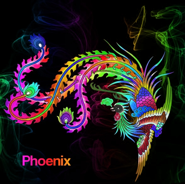 Brightly colored phoenix bird represents overcoming narcissistic emotional abuse.