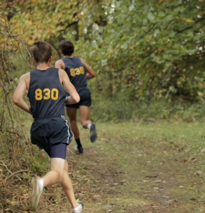 Runner in forest
