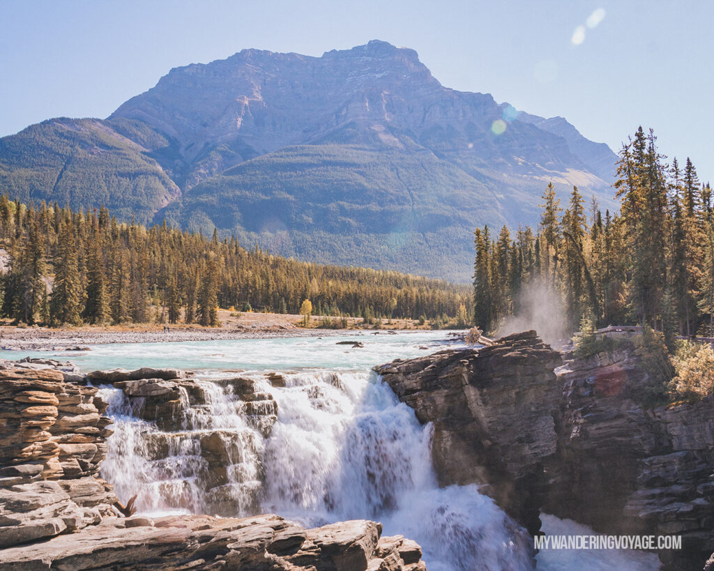Athabasca Falls | Top things to see in Jasper and Banff | My Wandering Voyage