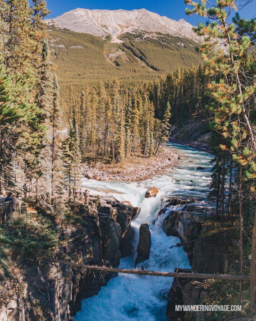 Sunwapta Falls | Top things to see in Jasper and Banff | My Wandering Voyage