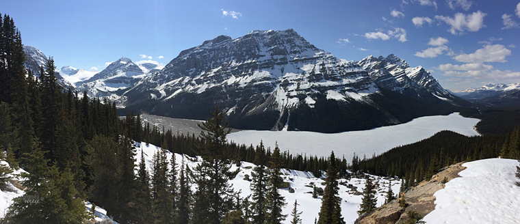 Peyto Lake, Alberta - Fire and Ice: A Canadian Road Trip | My Wandering Voyage travel blog