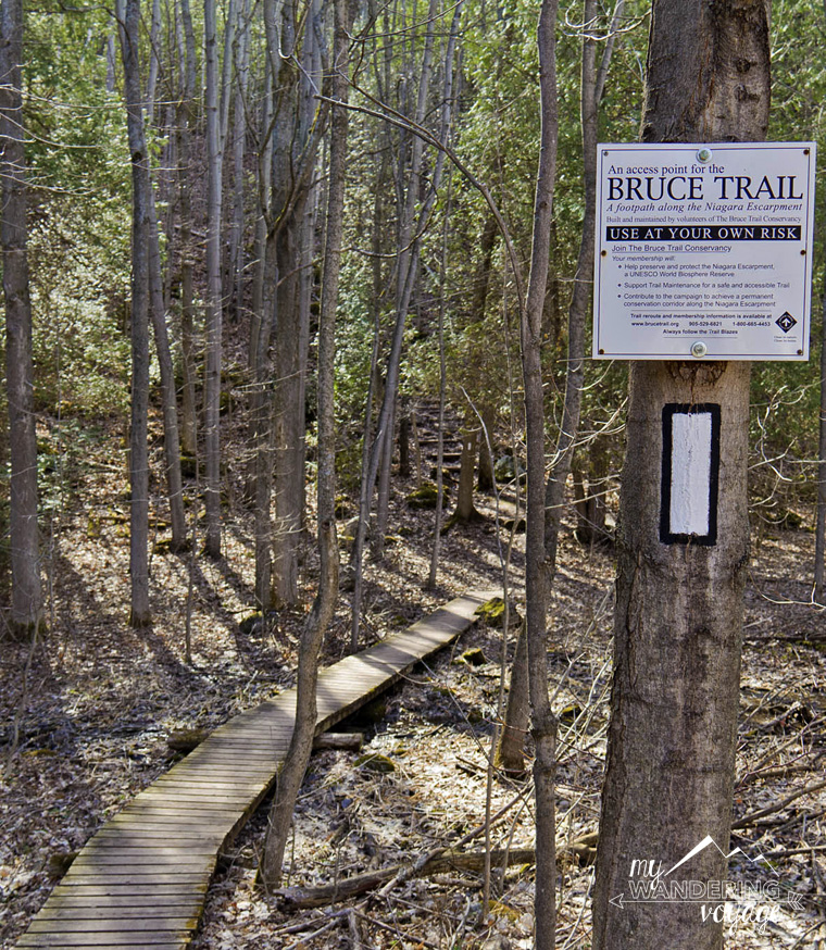 Ontario Trails Bruce Trail | My Wandering Voyage travel blog