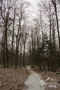 Crawford Lake Conservation Area - Ontario Trails | My Wandering Voyage travel blog