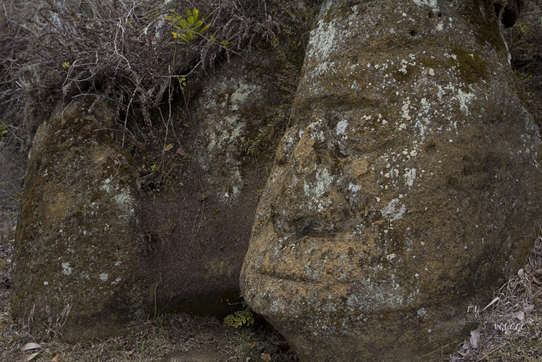 Carved Face, Floreana Island, Galapagos | My Wandering Voyage travel blog