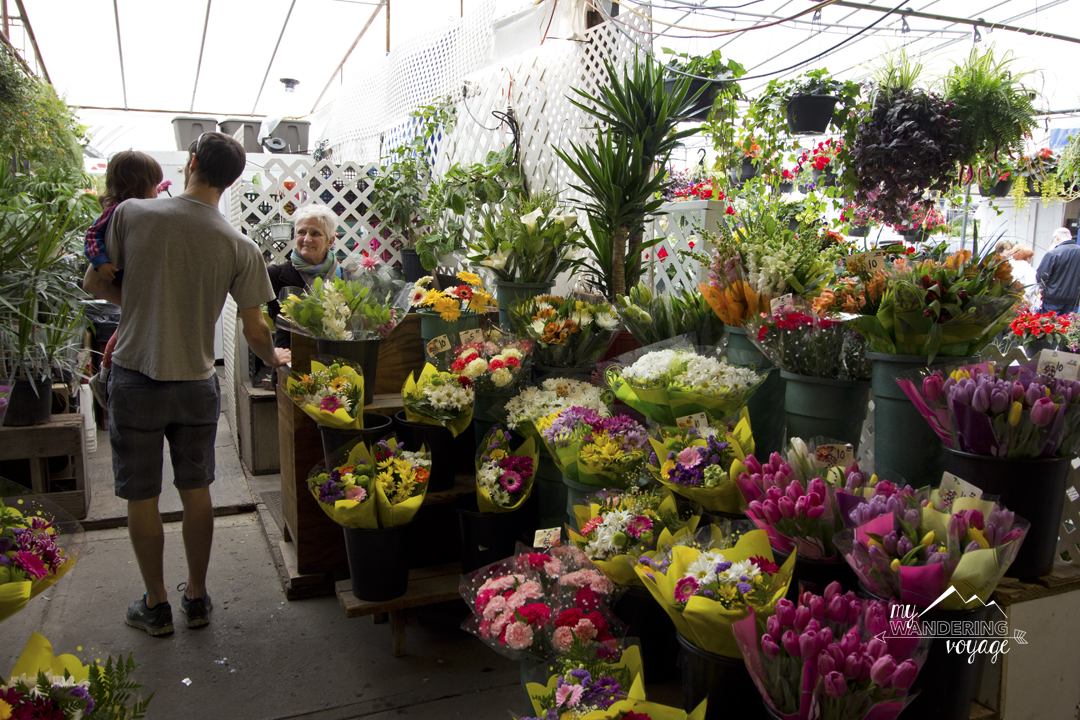 Flowers at the Atwater Market in Montreal - 14 essential experiences for a weekend in Montreal, Quebec, Canada | My Wandering Voyage travel blog