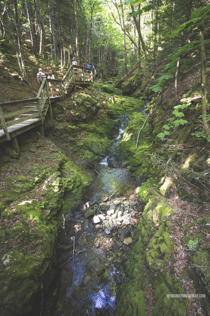 Discover Fundy National Park - 10 treasures to discover in New Brunswick, Canada. From rugged coasts to sandy beaches to French heritage and fresh seafood, New Brunswick has it all   My Wandering Voyage