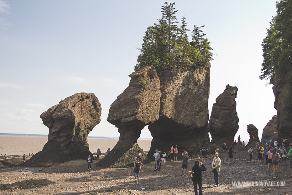 Discover Hopewell Rocks - 10 treasures to discover in New Brunswick, Canada. From rugged coasts to sandy beaches to French heritage and fresh seafood, New Brunswick has it all   My Wandering Voyage