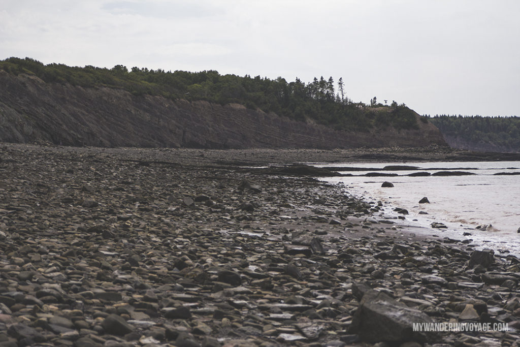Visit Lunenburg and other UNESCO World Heritage Sites in Nova Scotia – Go back in time at Joggins Fossil Cliffs, a rich deposit of fossils right here in Nova Scotia | My Wandering Voyage travel blog