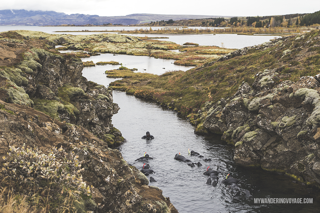 Silfra - The Golden Circle is a well-known destination in Iceland, and it's easy to see why. The Golden Circle is part of a road loop that can be seen in a day from Reykjavik and hits some of Iceland's most famous landmarks   My Wandering Voyage travel blog