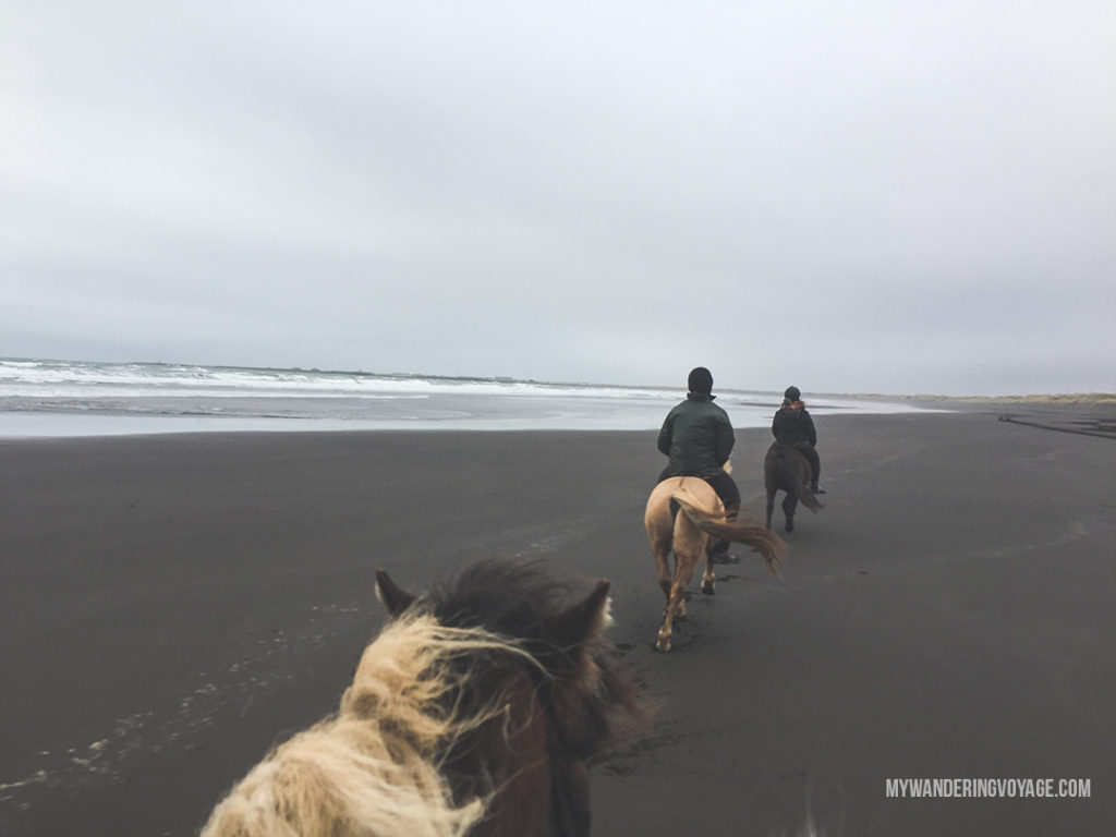 Top things to do in Iceland | Iceland is on everyone's bucket list, so here are the best experiences to have during a visit to Iceland. From the landscape to the food to the unbeatable views, there are so many amazing and unique things to do in Iceland | My Wandering Voyage travel blog