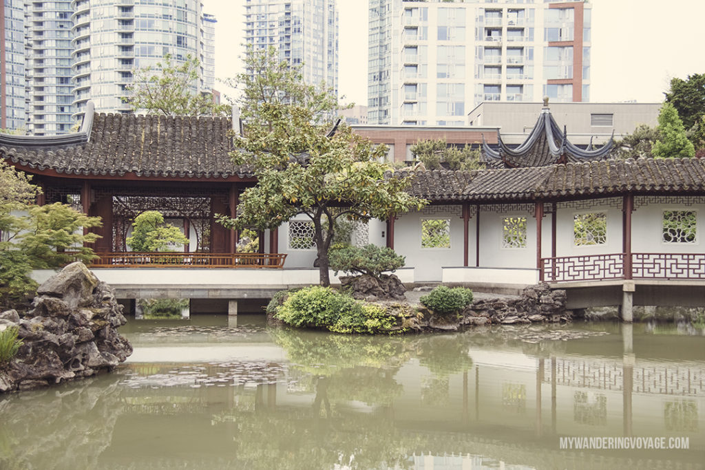 Classical Chinese Gardens | Get out and explore Beautiful British Columbia. From the coastal rainforests to the summit of mountains to cities like Vancouver and Victoria, there is so much to discover in British Columbia. Here's everything you need to see in 10 days in British Columbia | My Wandering Voyage travel blog