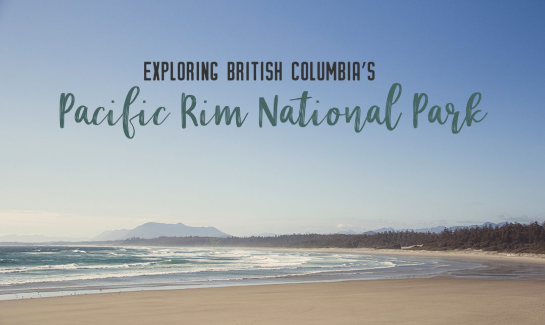 Explore Pacific Rim National Park Reserve, located on the western coast of Vancouver Island in British Columbia. From surfing to hiking to long stretches of beach, Pacific Rim is an adventurer's paradise | My Wandering Voyage #PacificRimNationalParkReserve #VancouverIsland #BritishColumbia #ParksCanada #Canada #Canadatravel #travel
