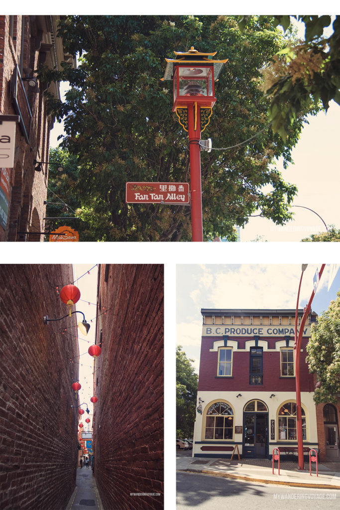 Fan Tan Alley | Victoria, BC, located on Vancouver Island, is a regal city ready for exploring. So whether you stay for a day or a week, there's always something charming to do in Victoria, BC. #VictoriaBC #BritishColumbia #Canada #exploreCanada #exploreBC