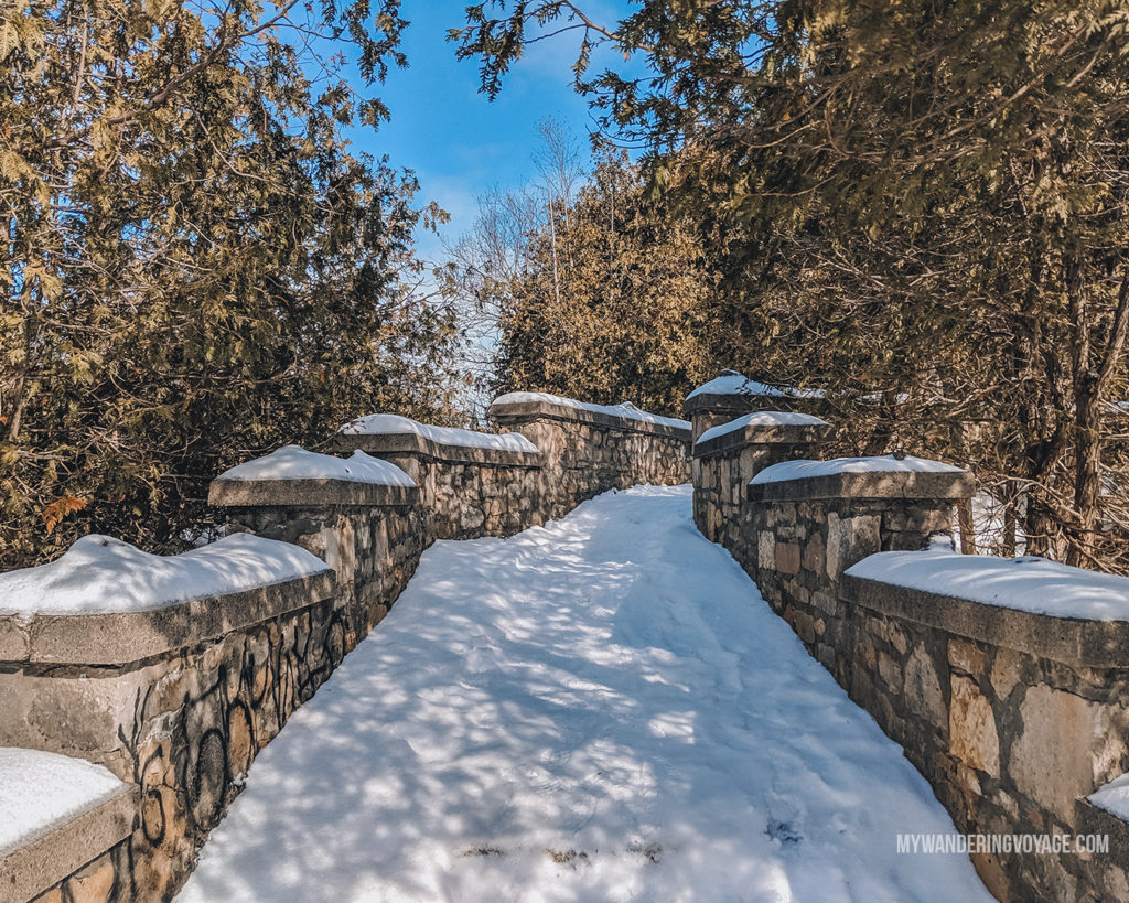 Elora Gorge Lookout | The ultimate list of things to do in Elora, Ontario. Visit Elora for its small town charm, natural beauty and one-of-a-kind shops and restaurants | My Wandering Voyage travel blog