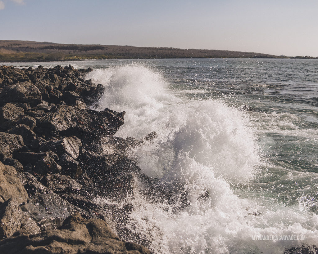 waves crashing on the beach | What to pack for the Galapagos Islands. Find out what to bring, what to leave at home, when the best time to visit the Galapagos Islands is, and other tips in this Galapagos packing list. | My Wandering Voyage travel blog #travel #galapagos #galapagosislands #packing list