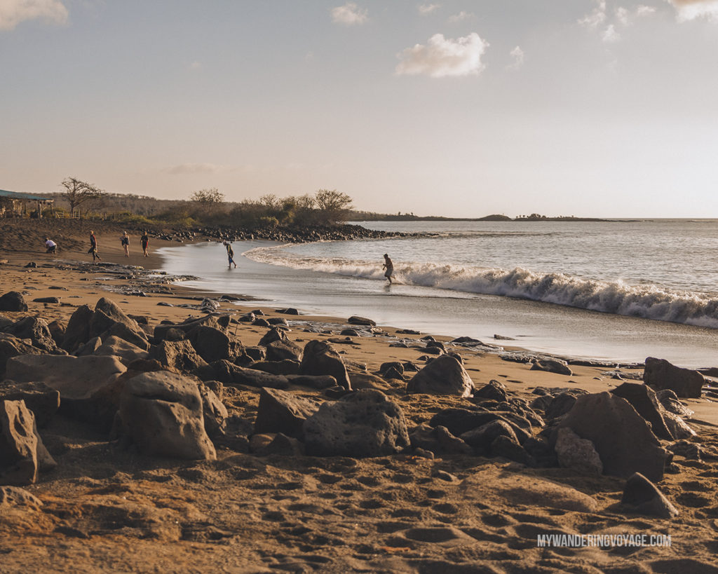 Playa Negra on Floreana Island | What to pack for the Galapagos Islands. Find out what to bring, what to leave at home, when the best time to visit the Galapagos Islands is, and other tips in this Galapagos packing list. | My Wandering Voyage travel blog #travel #galapagos #galapagosislands #packing list