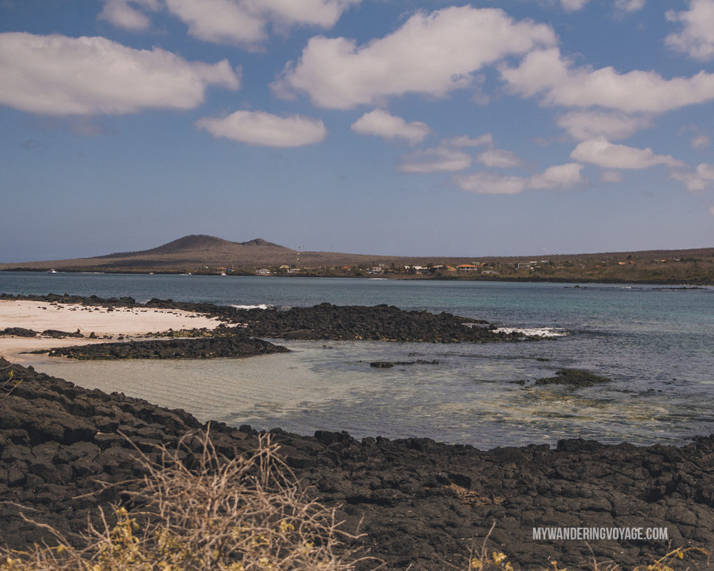 Best snorkelling on Floreana Island | What to pack for the Galapagos Islands. Find out what to bring, what to leave at home, when the best time to visit the Galapagos Islands is, and other tips in this Galapagos packing list. | My Wandering Voyage travel blog #travel #galapagos #galapagosislands #packing list