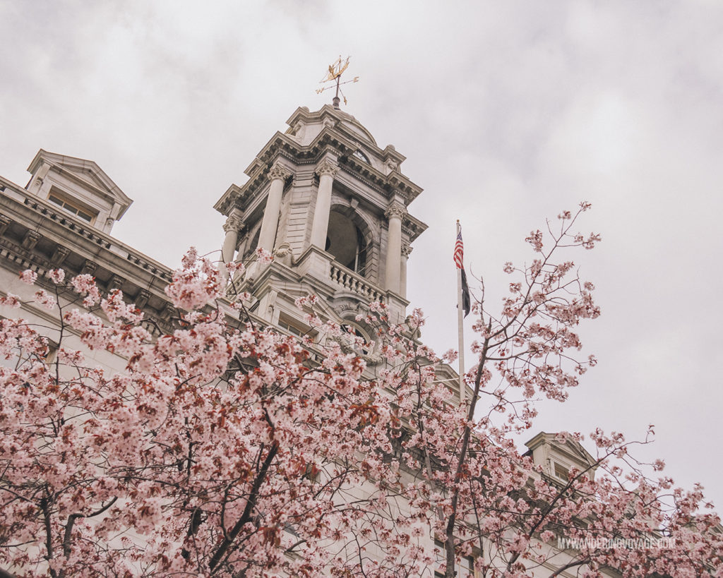 City Hall in Bloom Portland, Maine | Grab your best gal pals or significant other for the ultimate weekend getaway in Portland, Maine. Find where to stay, what to eat and things to do in this guide to Portland, Maine. | My Wandering Voyage travel blog #Portland #Maine #USA #travel