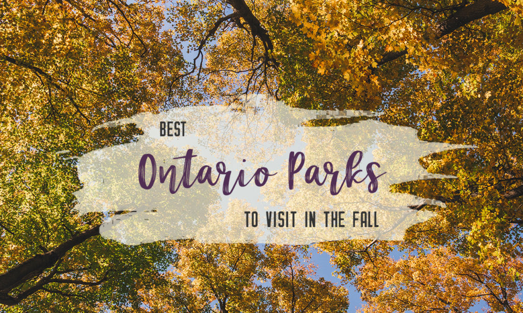 Best Ontario Provincial Parks to visit in fall