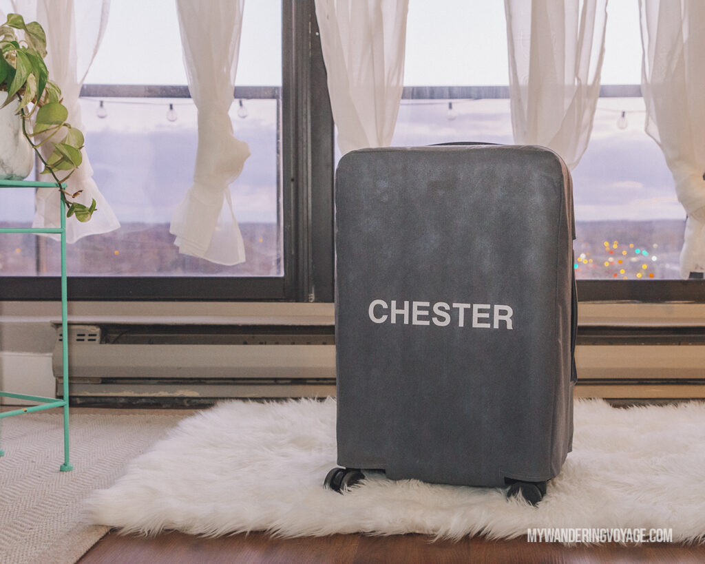 CHESTER suitcase with packaging | CHESTER luggage review for best carry on luggage | My Wandering Voyage Travel Blog