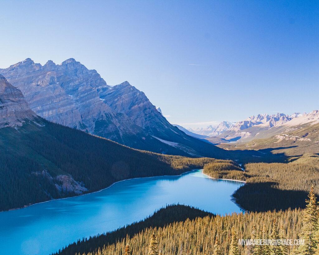 Peyto Lake, Banff National Park | Canada Travel Guide | Canada Bucket List  My Wandering Voyage travel blog