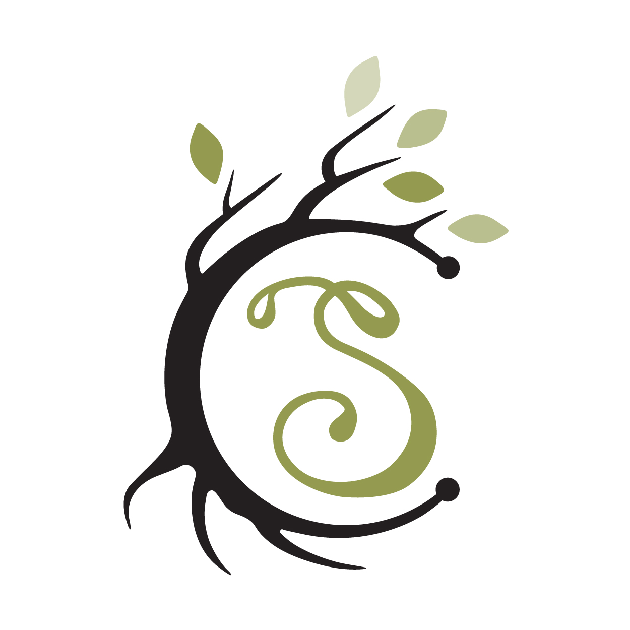 Salix & Sage Logo Design & Digital Art for Website