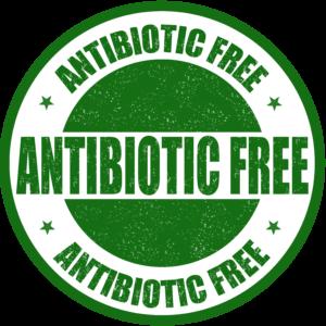 antibiotic-free-white
