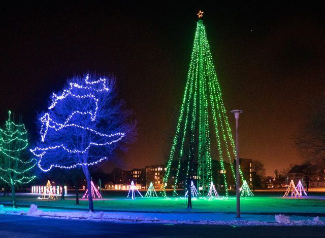 COL lighted display – trees  (photo by Jim Koepnick)