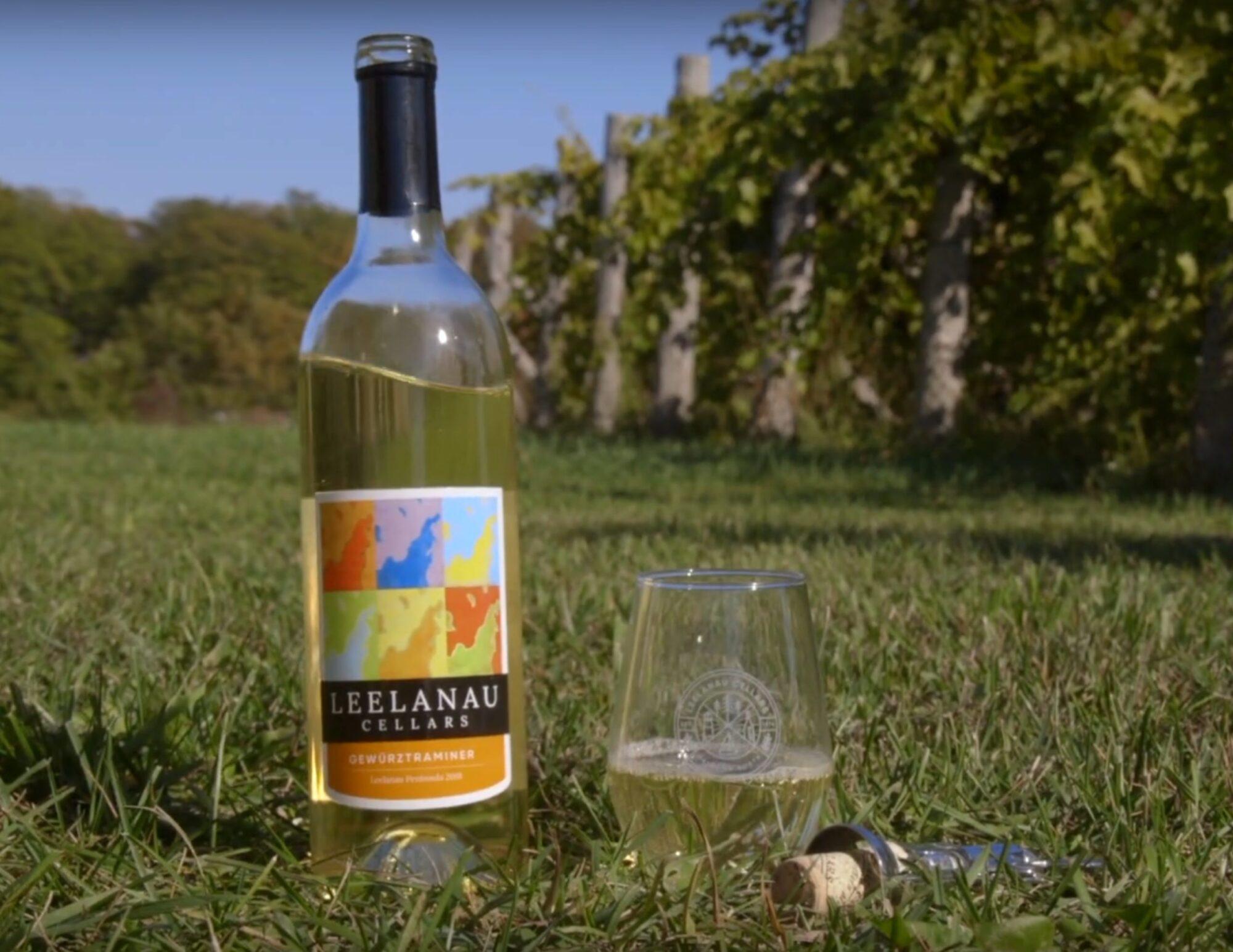 Vineyard Vibes