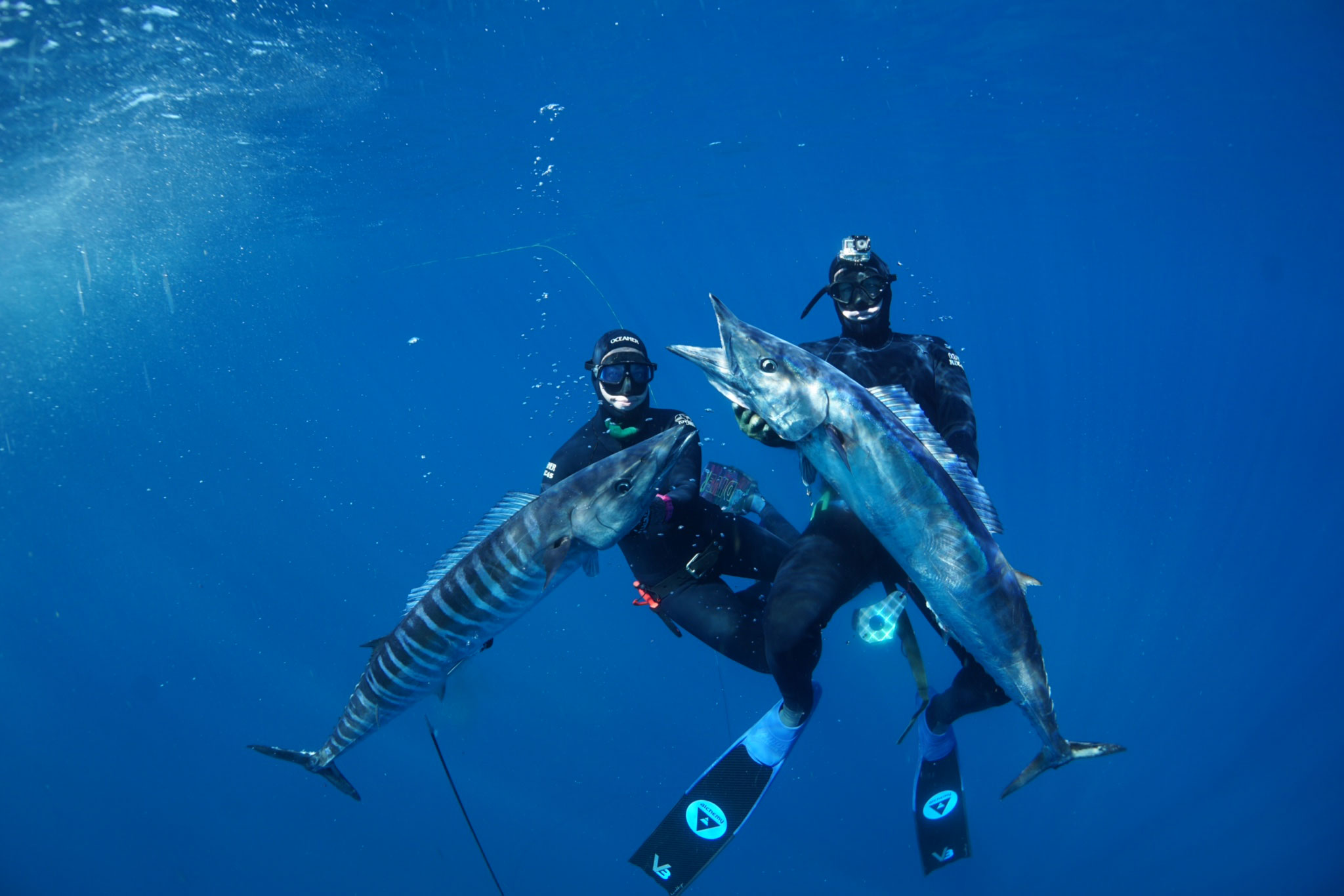 Spearing Wahoo Far Out Charters