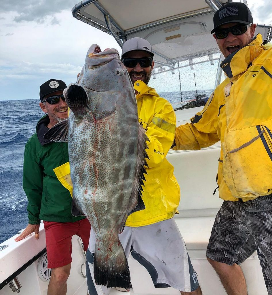 Black Grouper Caught In Key West
