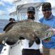 Grouper Fishing In Key West Florida