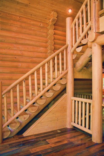 Log Railing and Staircase