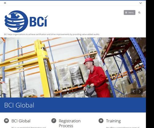 BCI Academy