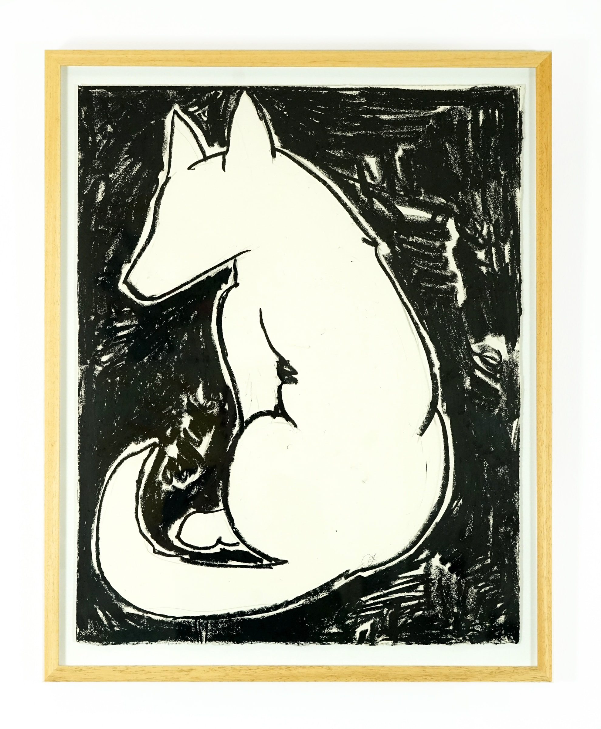 Canine 3