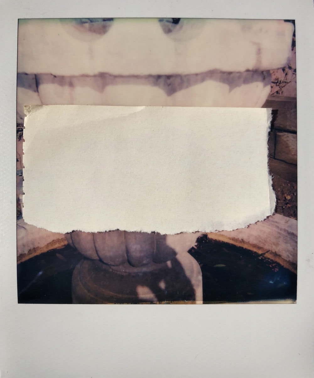 Michael Harnish_POLAROID_5