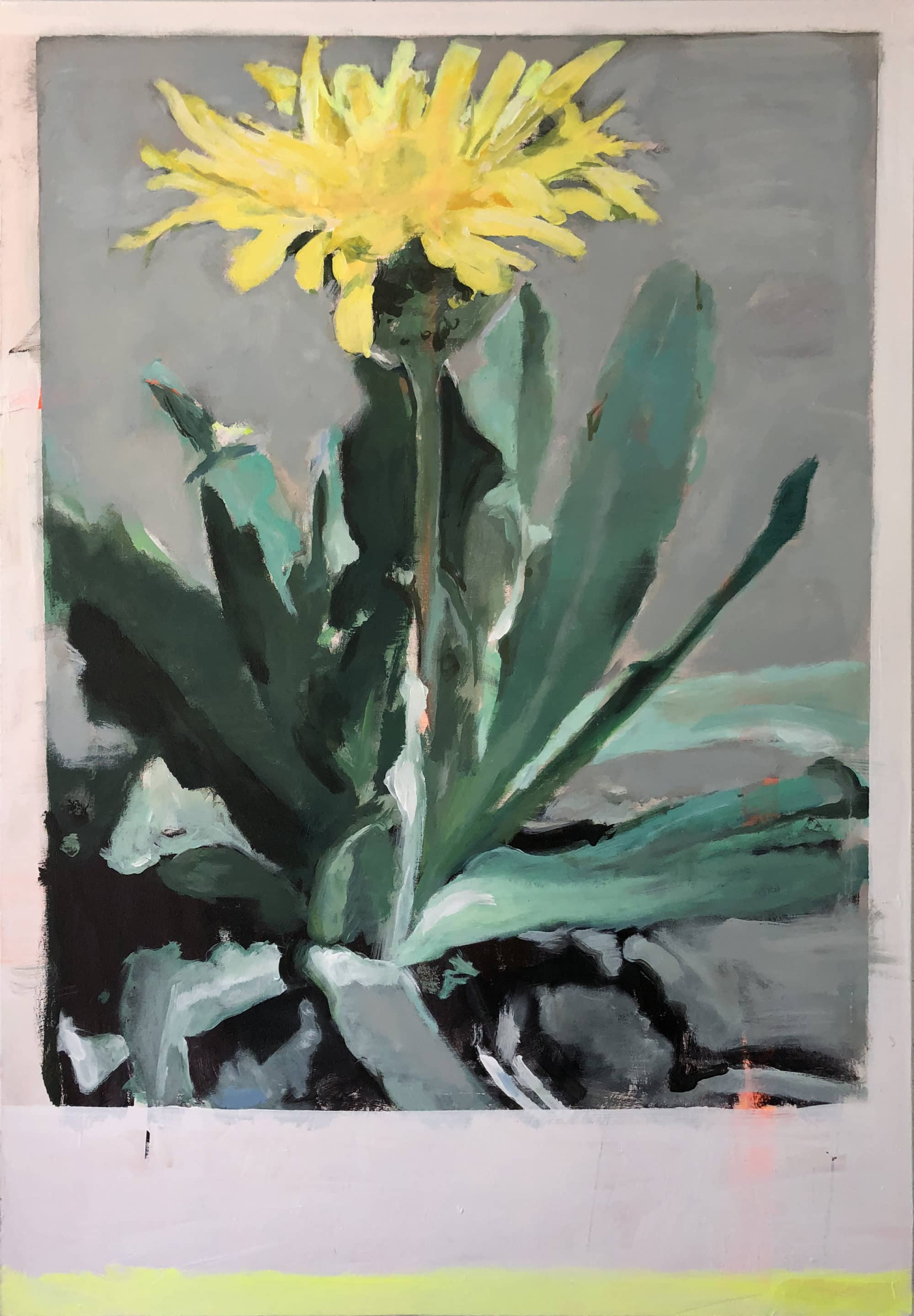 Michael_Harnish_DANDELION_48 x 36 inches_oil