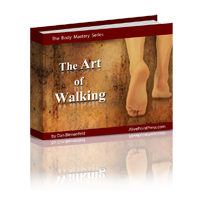 3D-The Art of  Walking