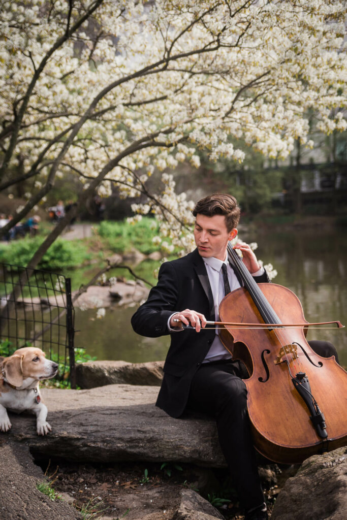 cellist in central park
