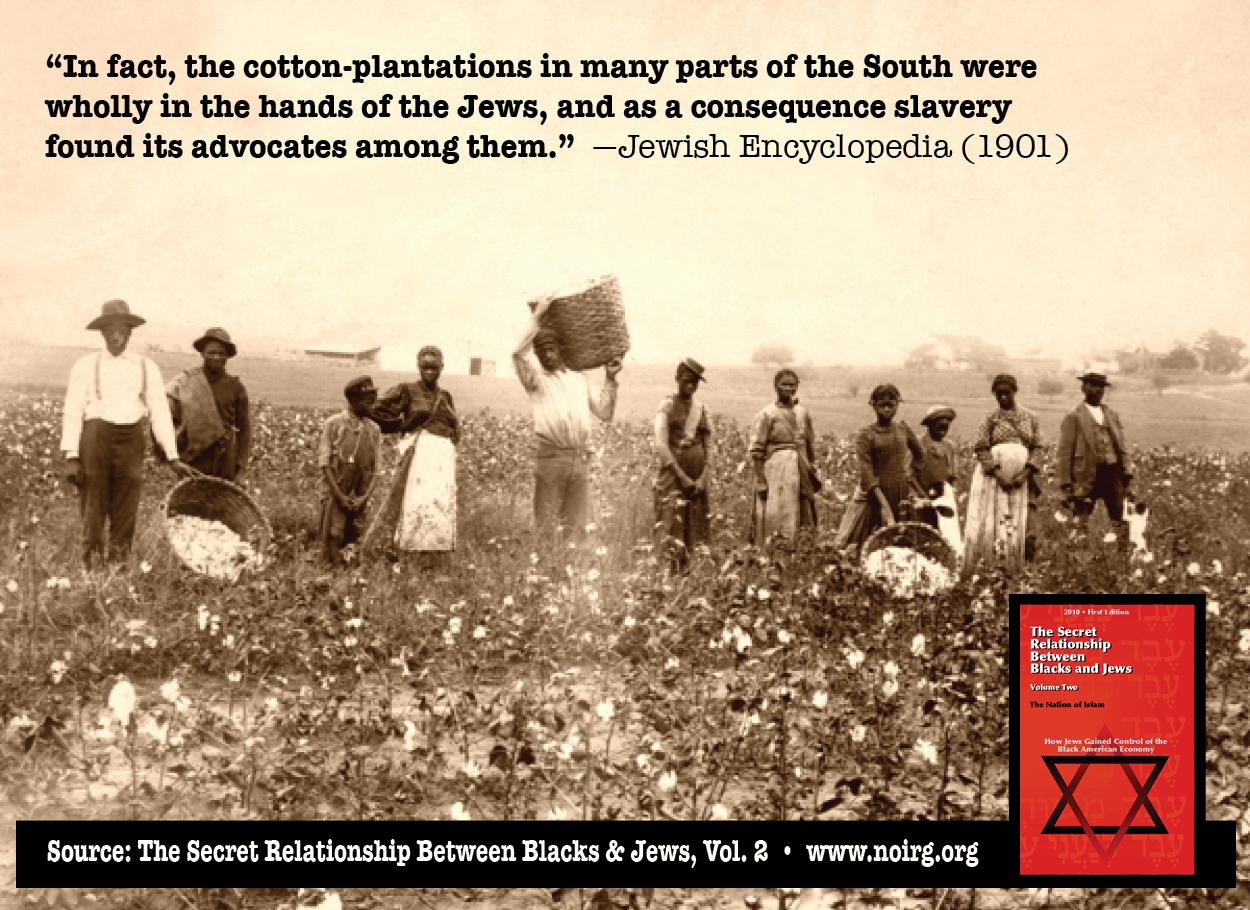 CottonPlantationJewsTSR2