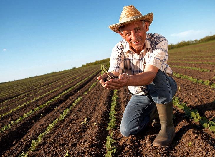 REFORMA AGRARIA: PROPUESTA DE ABDA