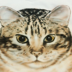 Air Brush your pet. All we need is a good photo.