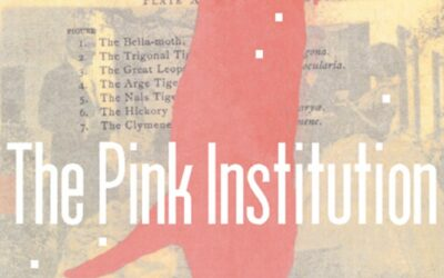 The Pink Institution, Selah Saterstrom