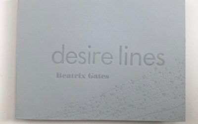 Bea Gates' new book desire lines now published