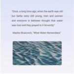 Michigan Quarterly Review launch includes student Masha Shukovich